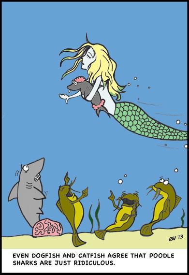poodle sharks